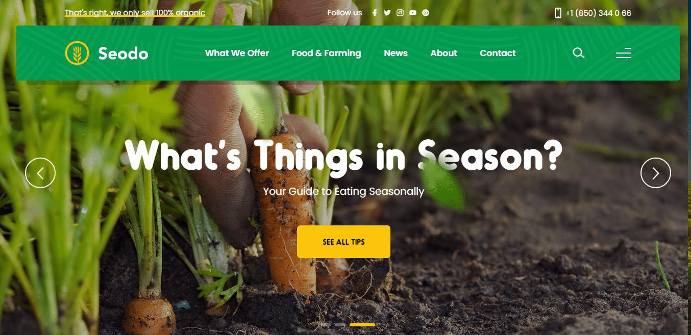seodo-agriculture-website-template