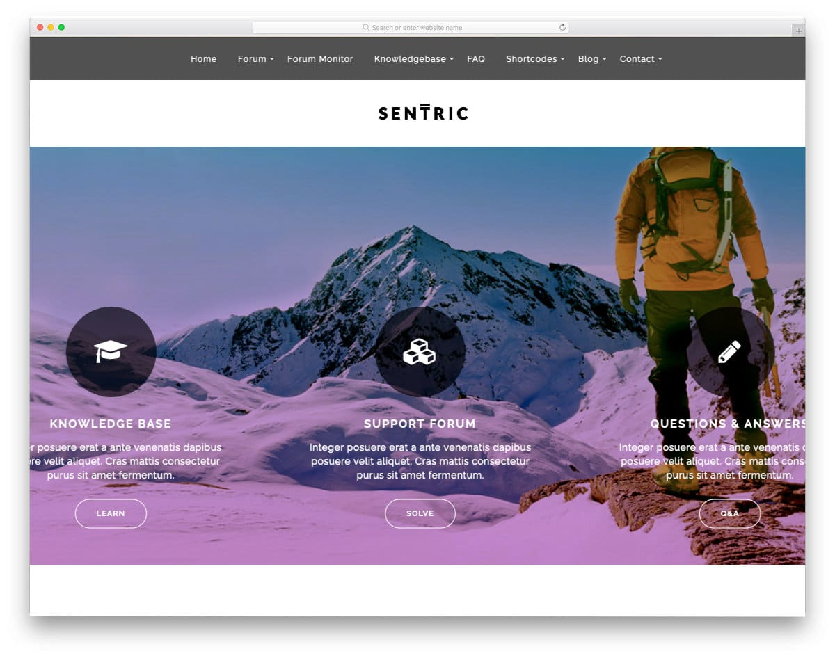 forum and support WordPress theme