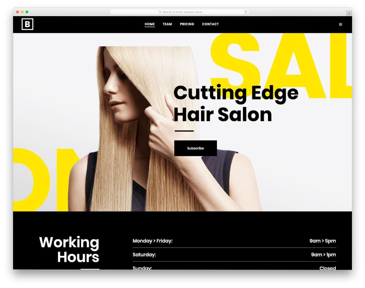 stylish hair salon websites templates