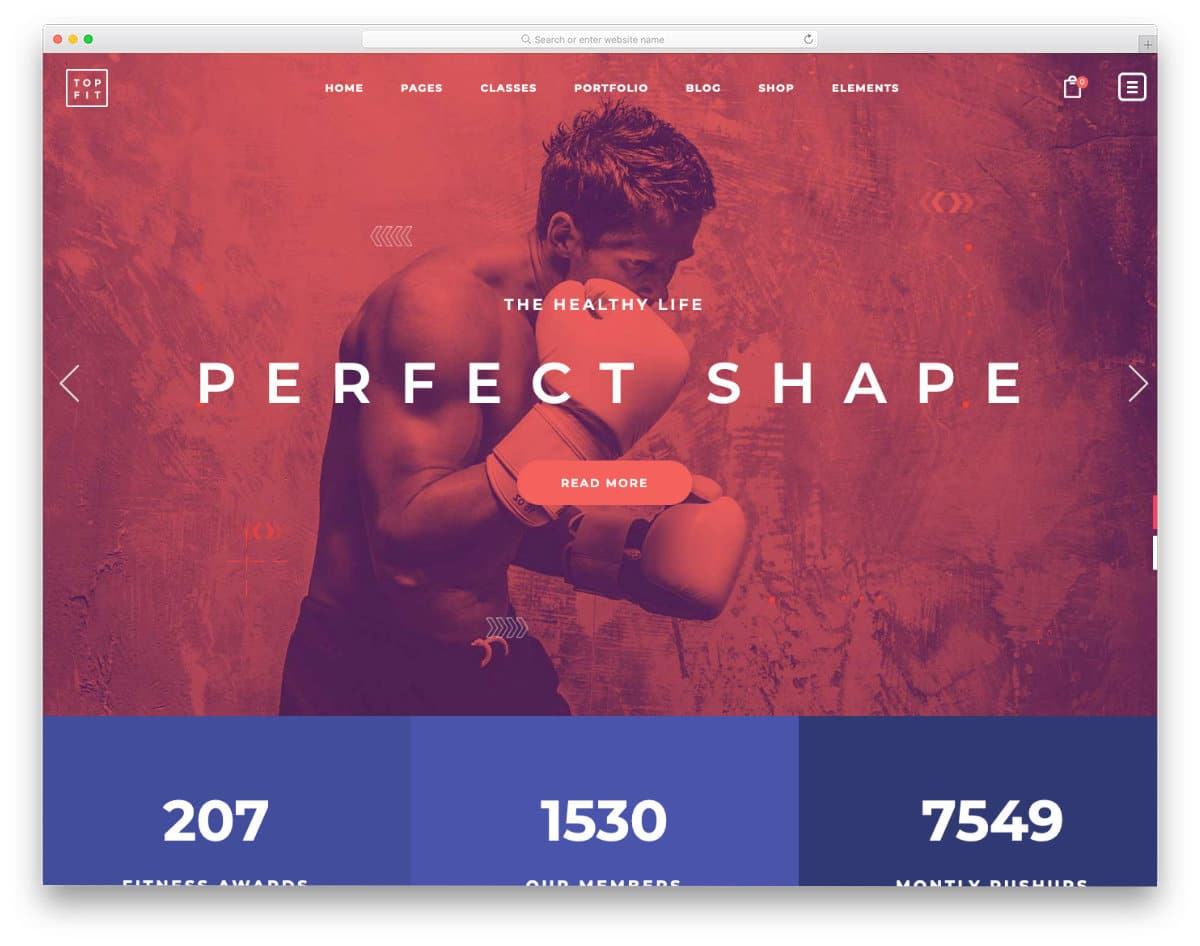 colorful and interactive WordPress martial arts website templates