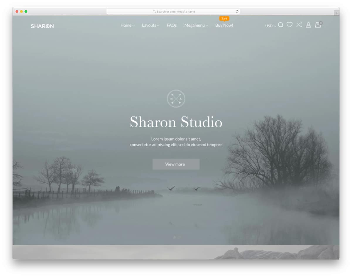 easy-to-handle Shopify parallax theme