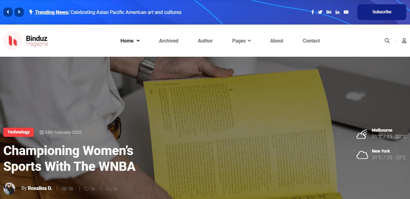binduz-news-website-template