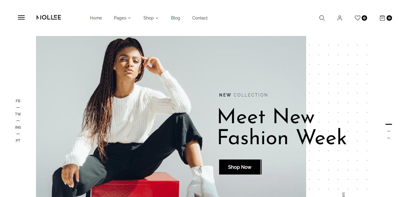 mollee-ecommerce-website-templat